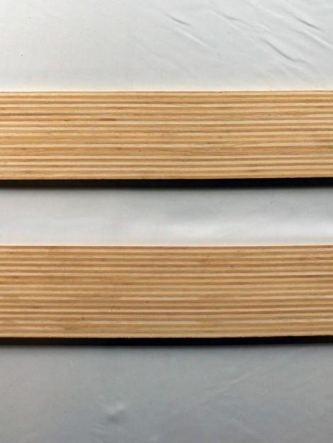 Bambou Paulownia 1